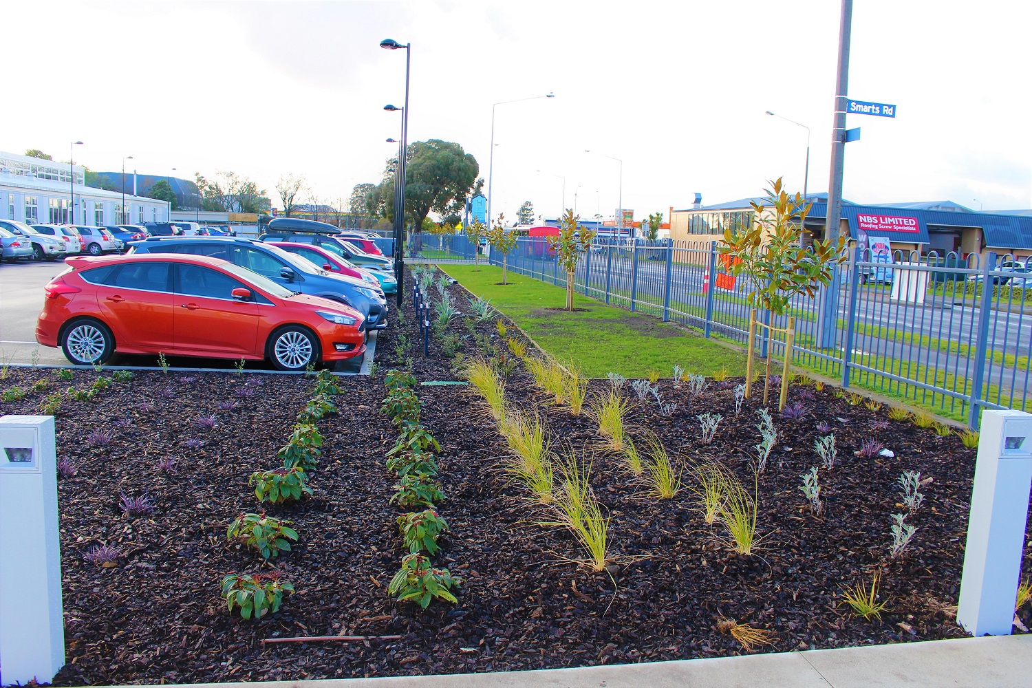 Landscaping in a carpark with a lawn and trees and shurbs