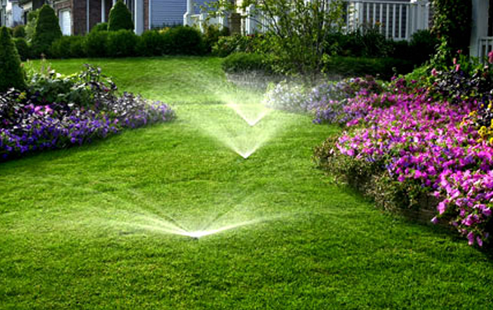 irrigation watering lawn and garden